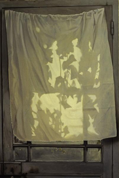 Le rideau - huile sur toile